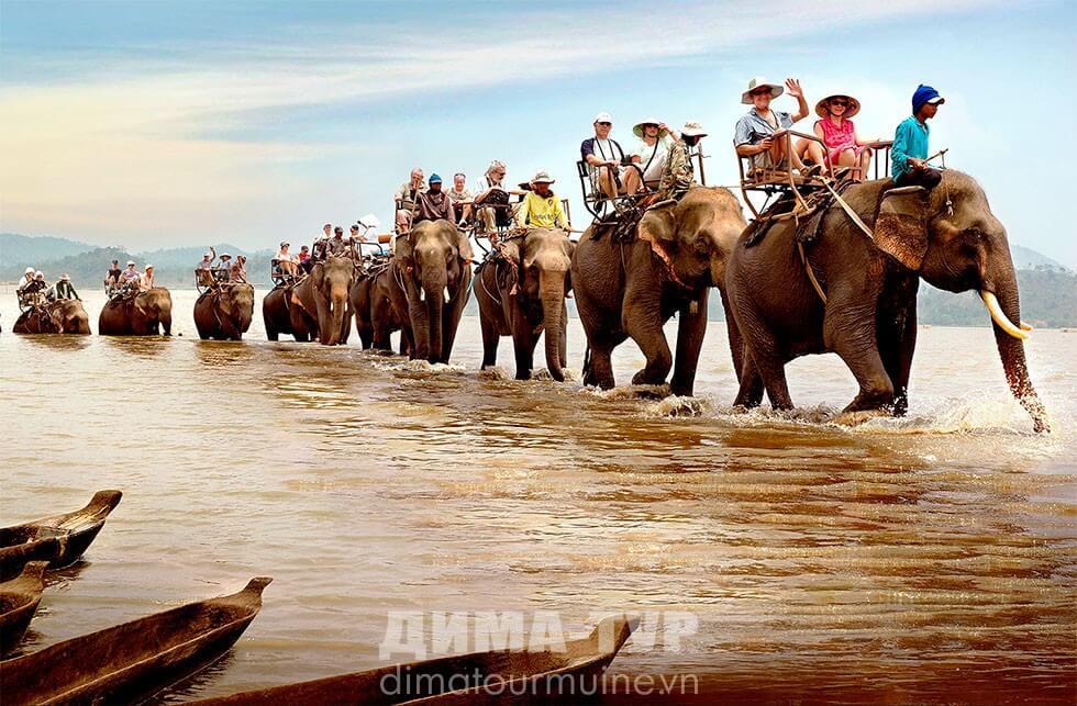 Экскурсия в Даклак и катание на слонах