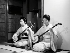 Музыкальные инструменты Вьетнама. Дан Даи