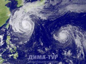 Тайфуны в тропиках