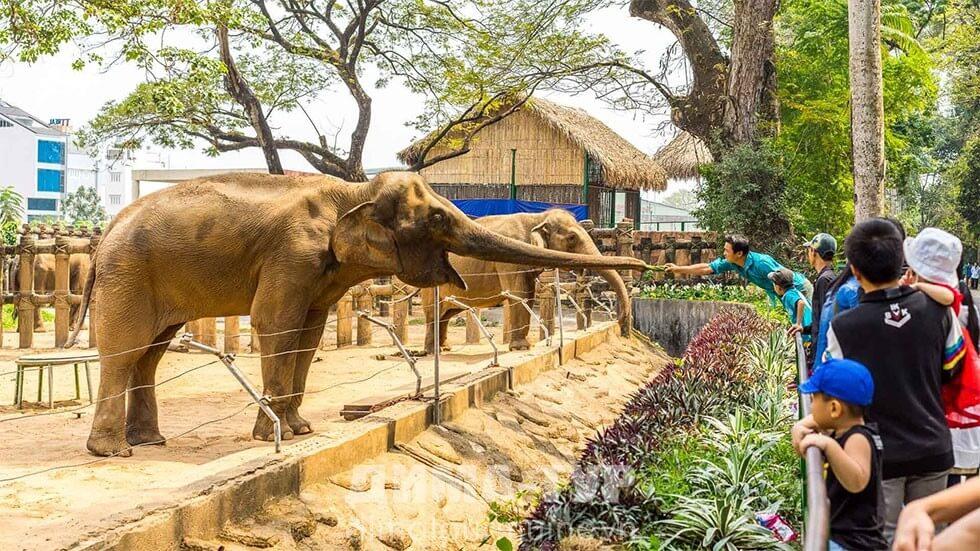 Зоопарк в Сайгоне