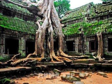 Экскурсии : Камбоджа, храм Ангкор Ват