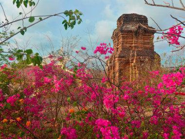Экскурсия на Чамские башни Пошану