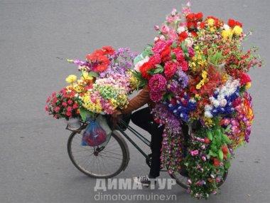 Цветы Вьетнама