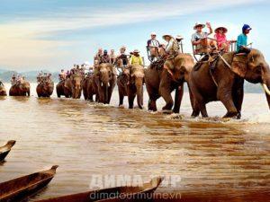 Даклак, катание на слонах