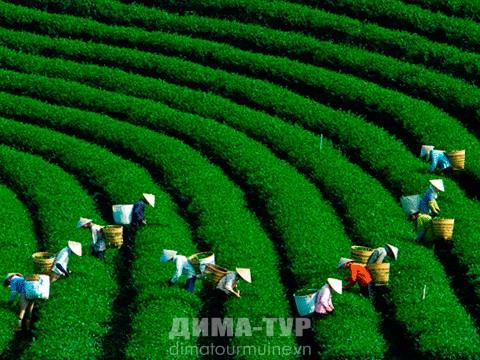 «Мир наизнанку» о столице Вьетнама городе Ханое