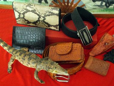 Сумки, ремни, кошельки и другие изделия из крокодиловой кожи в Муйне. Вьетнам