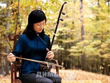Музыкальные инструменты Вьетнама. Смычковой инструмент данни (dan nhi)