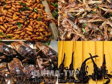 Насекомые и другая экзотичная еда во Вьетнаме