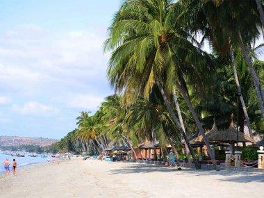 Основные пляжи Муйне во Вьетнаме