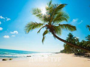 Пляжи Вьетнама : Фукуок