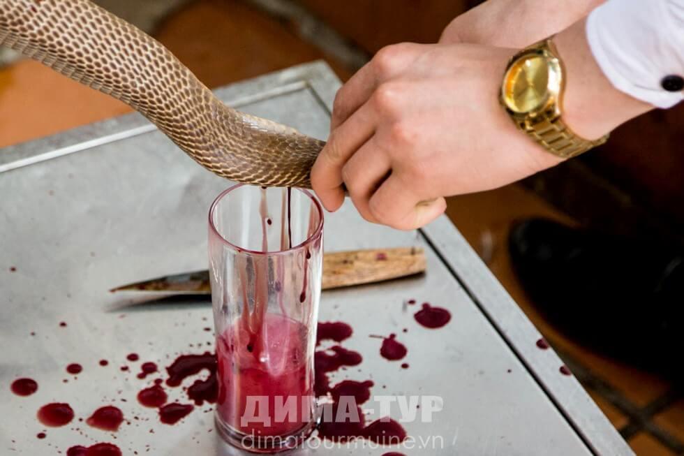 Ритуал с коброй, Вьетнам