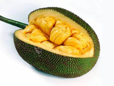 Тропические фрукты Вьетнама. Хлебное дерево