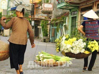 Вьетнамское коромысло гань